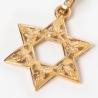 Pendente Stella di David foglie oro grande